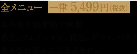 全メニュー  一律 5,499円(税抜) 高品質を低価格で実現 目元、フェイシャル、脱毛、ボディ、バスト 様々なお悩みに応えるサロン